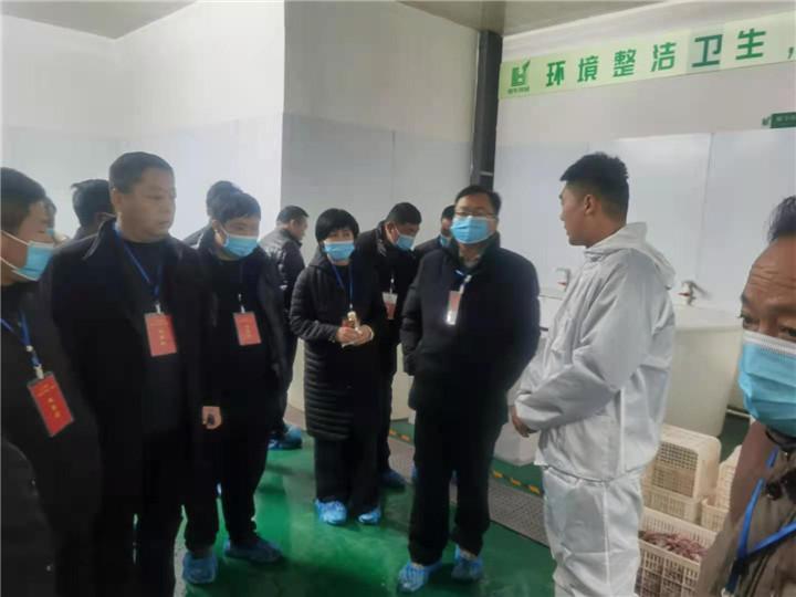 12月05日古王集乡蒋书记到公司参观